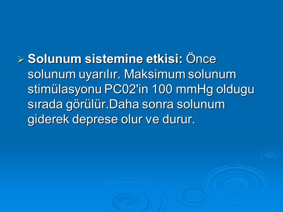 Solunum sistemine etkisi: Önce solunum uyarılır