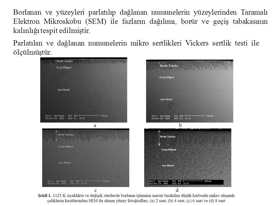 Borlanan ve yüzeyleri parlatılıp dağlanan numunelerin yüzeylerinden Taramalı Elektron Mikroskobu (SEM) ile fazların dağılımı, borür ve geçiş tabakasının kalınlığı tespit edilmiştir.