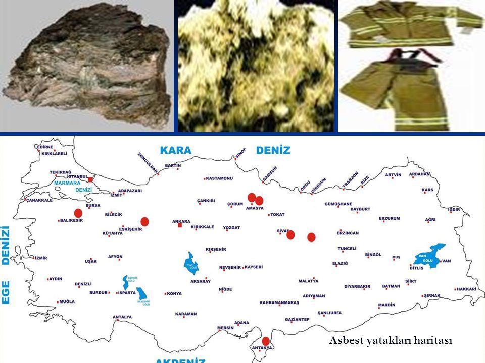 Asbest yatakları haritası
