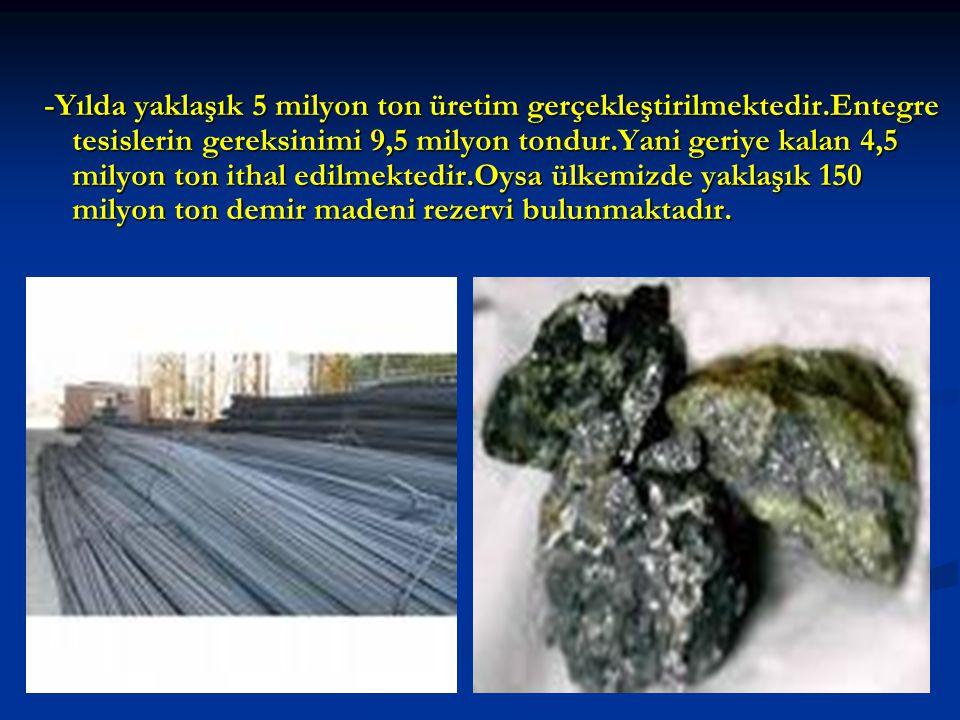 -Yılda yaklaşık 5 milyon ton üretim gerçekleştirilmektedir