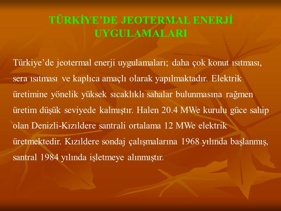 TÜRKİYE'DE JEOTERMAL ENERJİ UYGULAMALARI