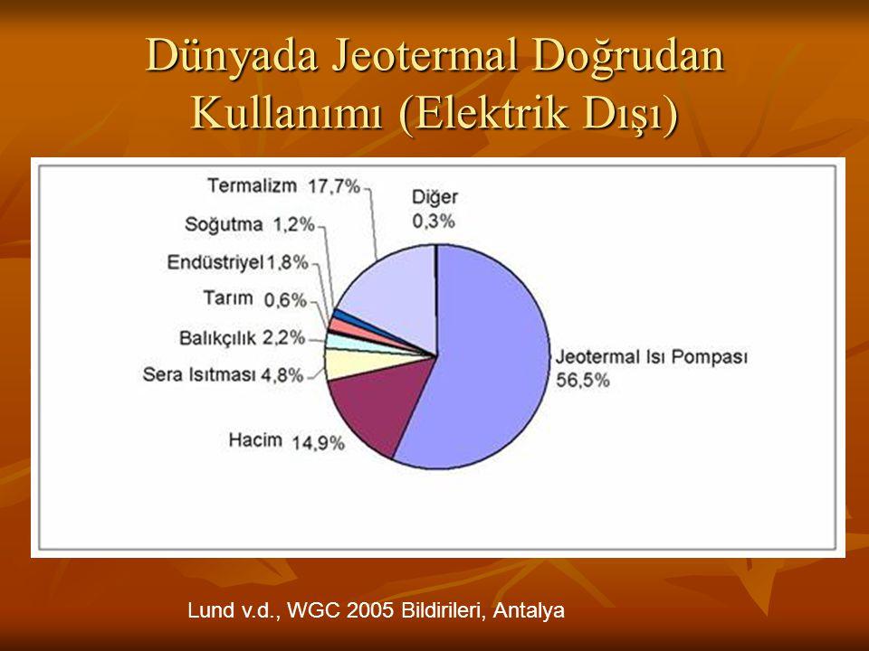 Dünyada Jeotermal Doğrudan Kullanımı (Elektrik Dışı)