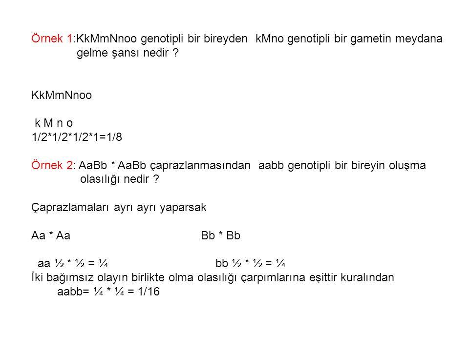 Örnek 1:KkMmNnoo genotipli bir bireyden kMno genotipli bir gametin meydana