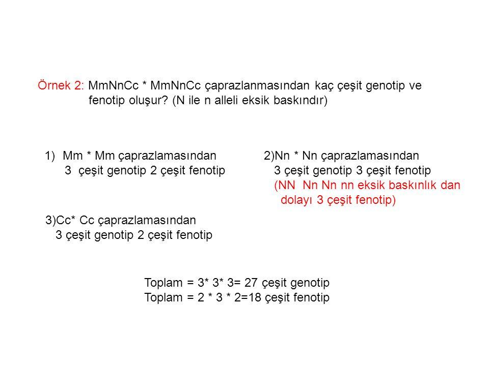 Örnek 2: MmNnCc * MmNnCc çaprazlanmasından kaç çeşit genotip ve