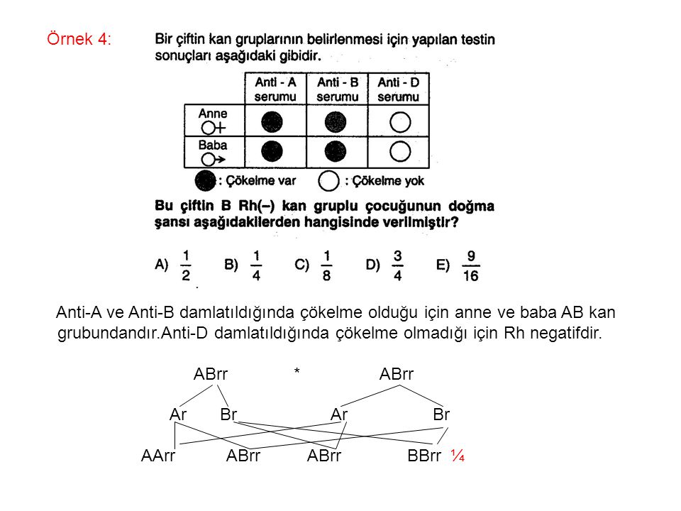 Örnek 4: Anti-A ve Anti-B damlatıldığında çökelme olduğu için anne ve baba AB kan.