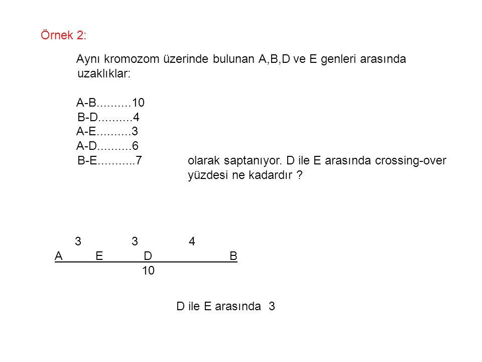 Örnek 2: Aynı kromozom üzerinde bulunan A,B,D ve E genleri arasında. uzaklıklar: A-B..........10.