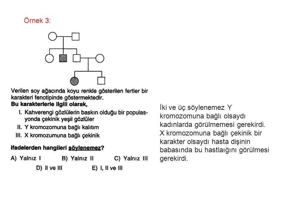 Örnek 3: İki ve üç söylenemez Y. kromozomuna bağlı olsaydı. kadınlarda görülmemesi gerekirdi. X kromozomuna bağlı çekinik bir.