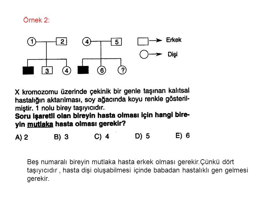 Örnek 2: Beş numaralı bireyin mutlaka hasta erkek olması gerekir.Çünkü dört.