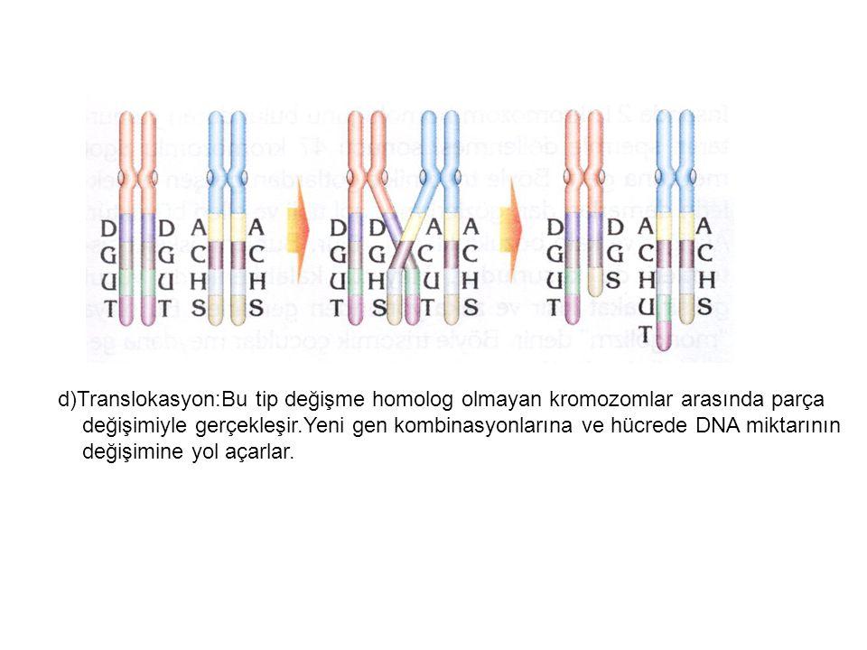 d)Translokasyon:Bu tip değişme homolog olmayan kromozomlar arasında parça