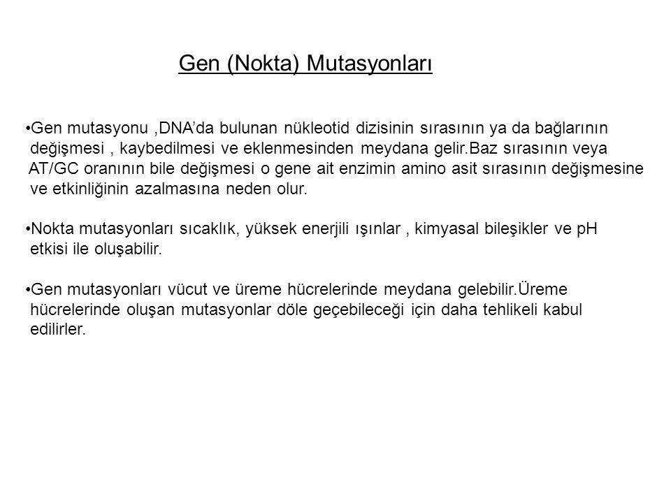 Gen (Nokta) Mutasyonları