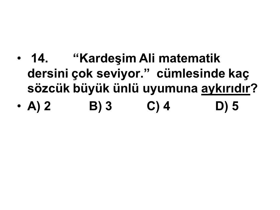 14. Kardeşim Ali matematik dersini çok seviyor