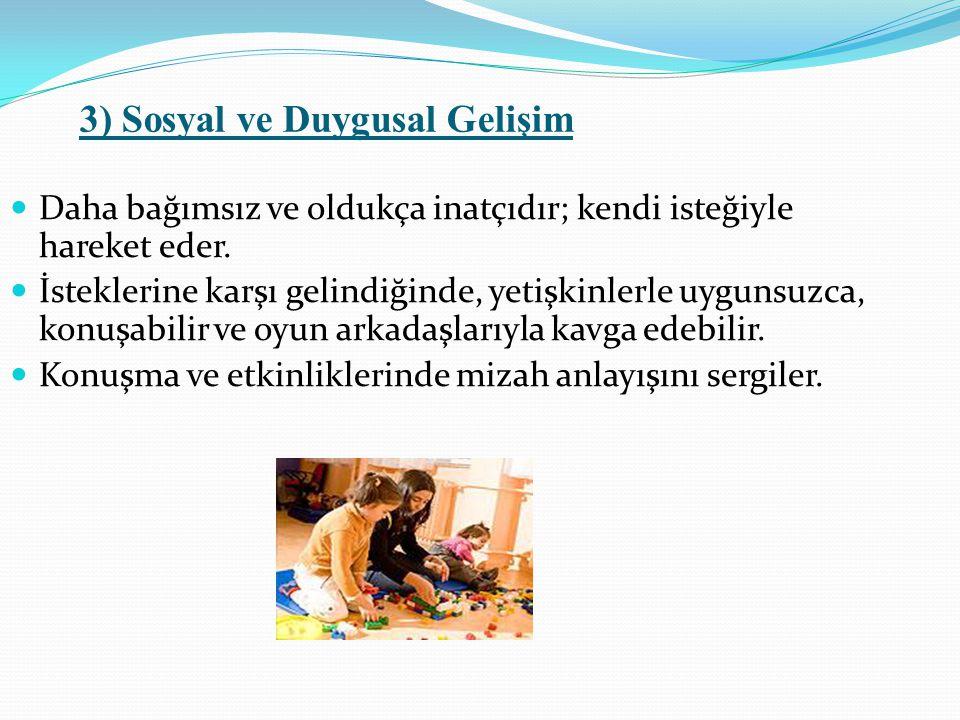 3) Sosyal ve Duygusal Gelişim