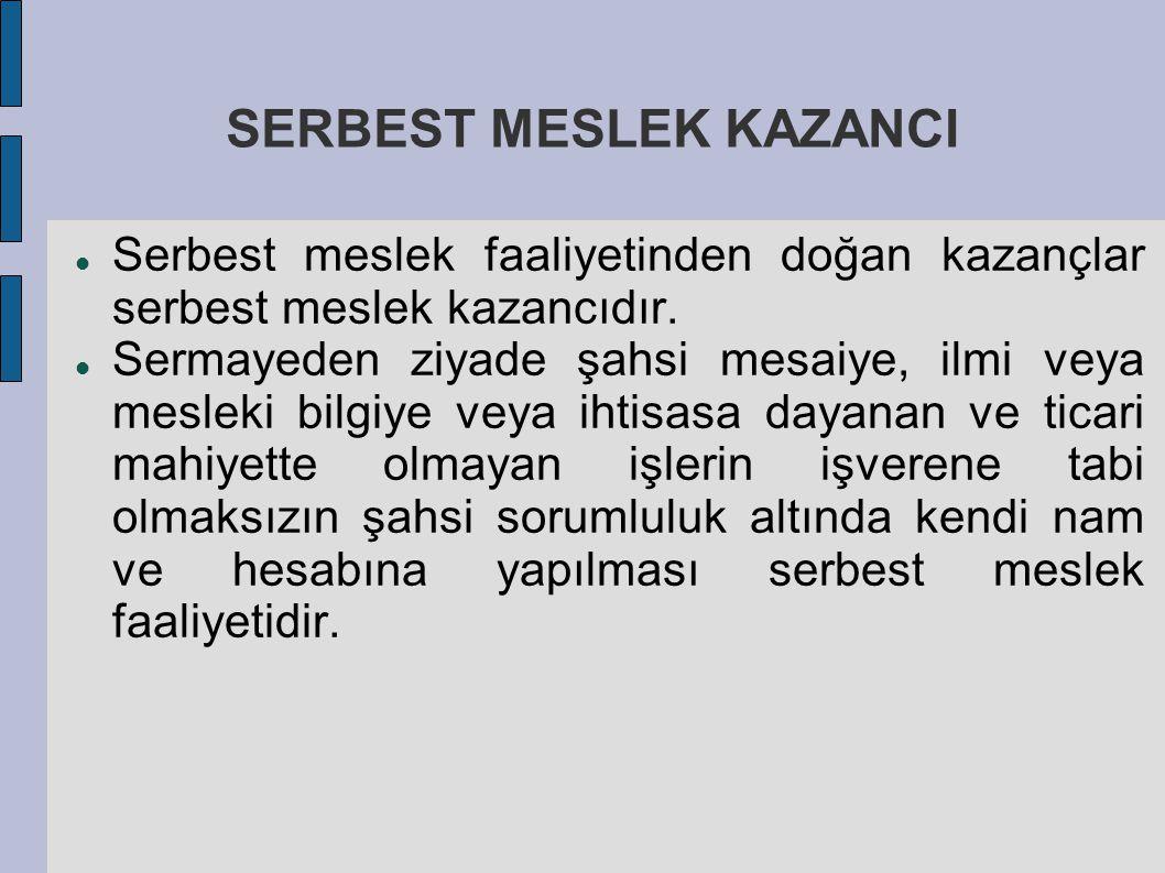SERBEST MESLEK KAZANCI