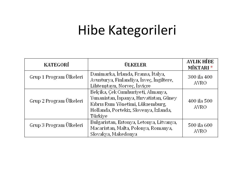 Hibe Kategorileri