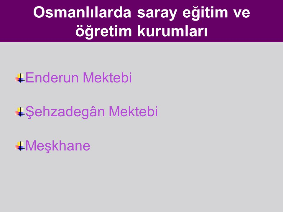 Osmanlılarda saray eğitim ve öğretim kurumları