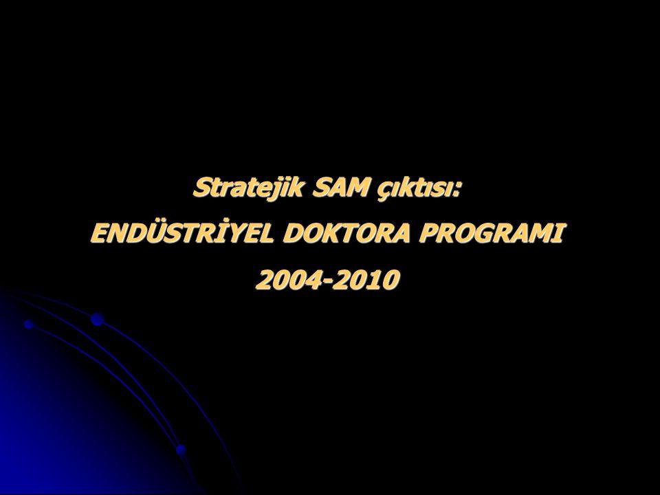 Stratejik SAM çıktısı: ENDÜSTRİYEL DOKTORA PROGRAMI