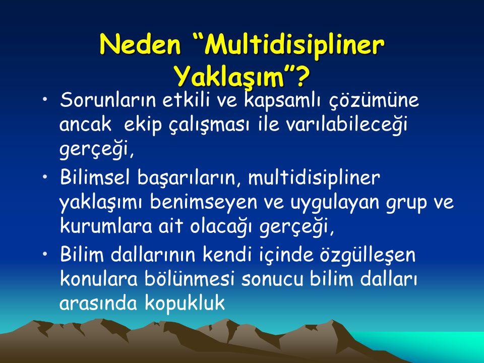 Neden Multidisipliner Yaklaşım