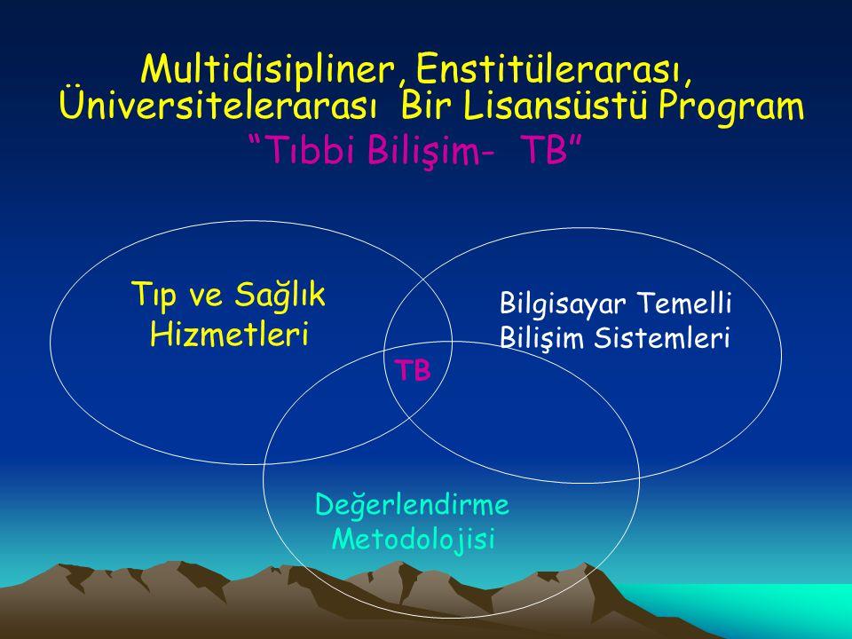 Multidisipliner, Enstitülerarası, Üniversitelerarası Bir Lisansüstü Program