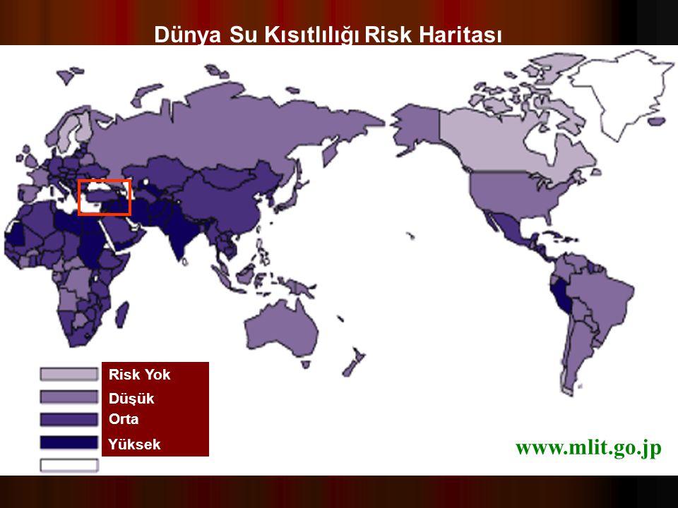 Dünya Su Kısıtlılığı Risk Haritası