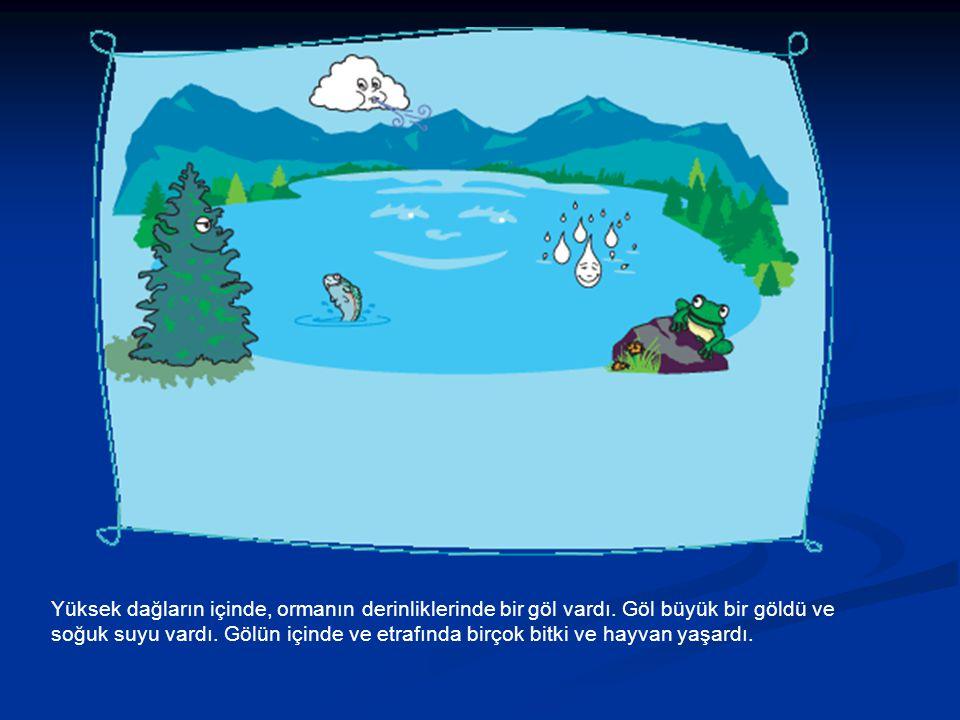 Yüksek dağların içinde, ormanın derinliklerinde bir göl vardı