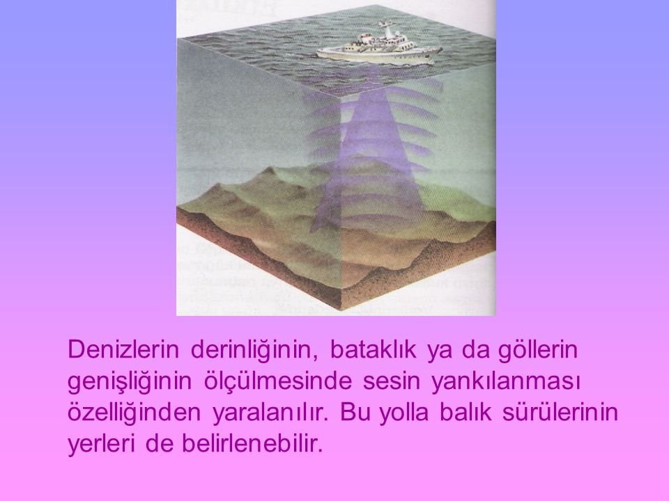 Denizlerin derinliğinin, bataklık ya da göllerin genişliğinin ölçülmesinde sesin yankılanması özelliğinden yaralanılır.