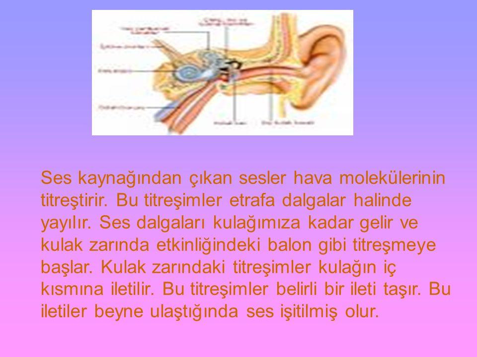 Ses kaynağından çıkan sesler hava molekülerinin titreştirir