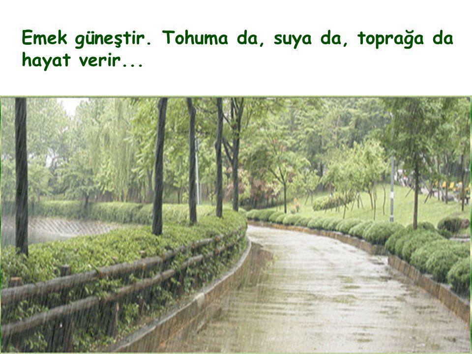 Emek güneştir. Tohuma da, suya da, toprağa da hayat verir...