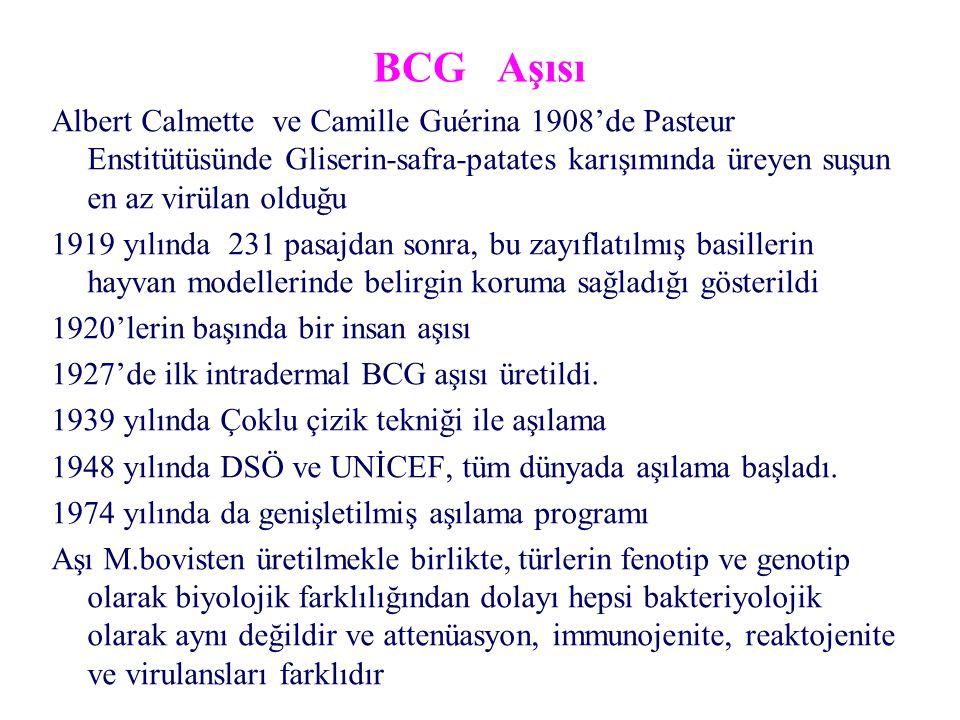BCG Aşısı Albert Calmette ve Camille Guérina 1908'de Pasteur Enstitütüsünde Gliserin-safra-patates karışımında üreyen suşun en az virülan olduğu.