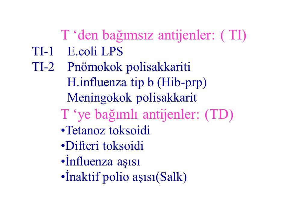 T 'den bağımsız antijenler: ( TI)