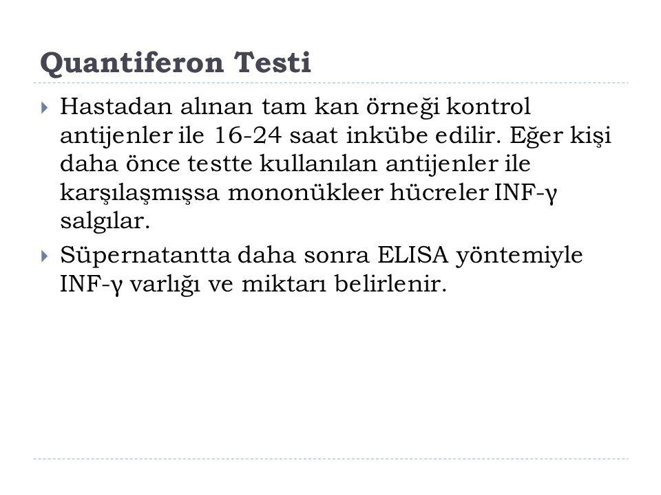 Quantiferon Testi