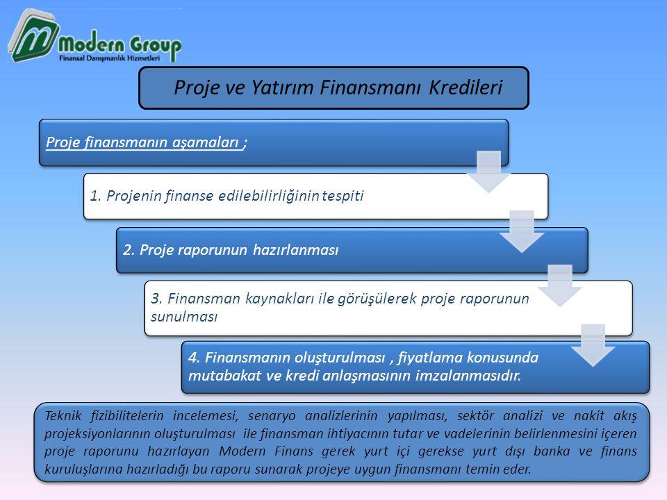 Proje ve Yatırım Finansmanı Kredileri
