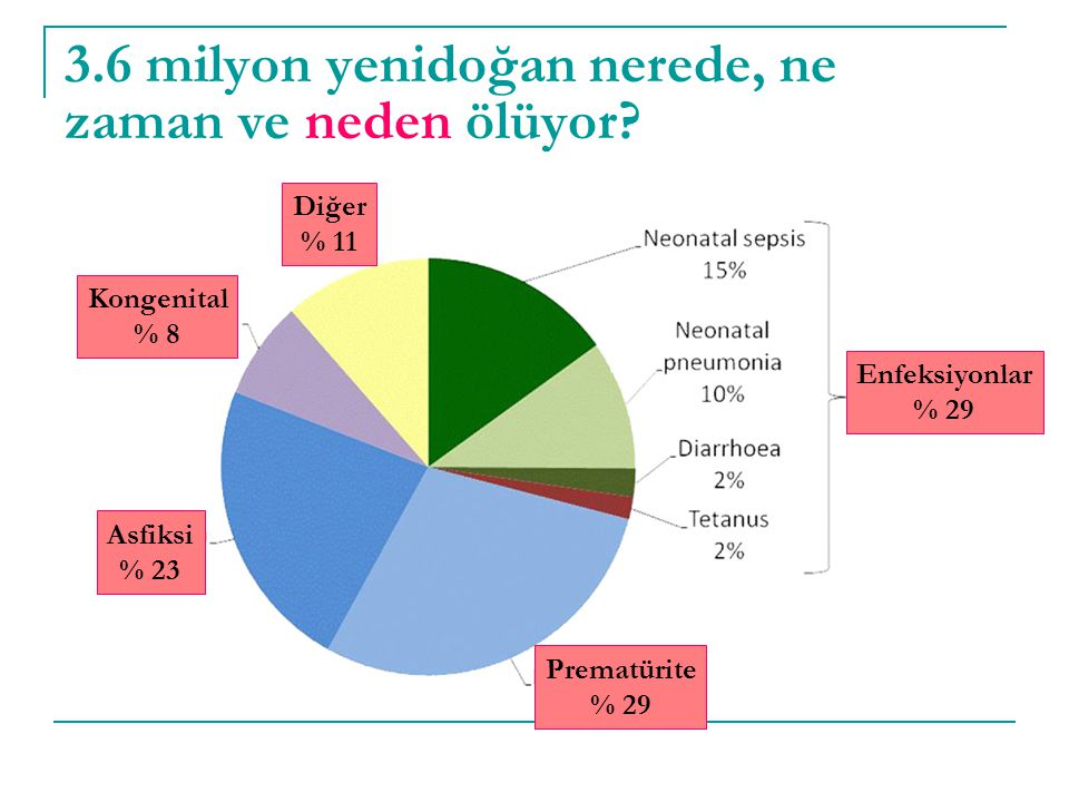 3.6 milyon yenidoğan nerede, ne zaman ve neden ölüyor
