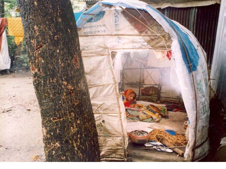 Photograph: A typical shed specially made for delivery in Bangladesh