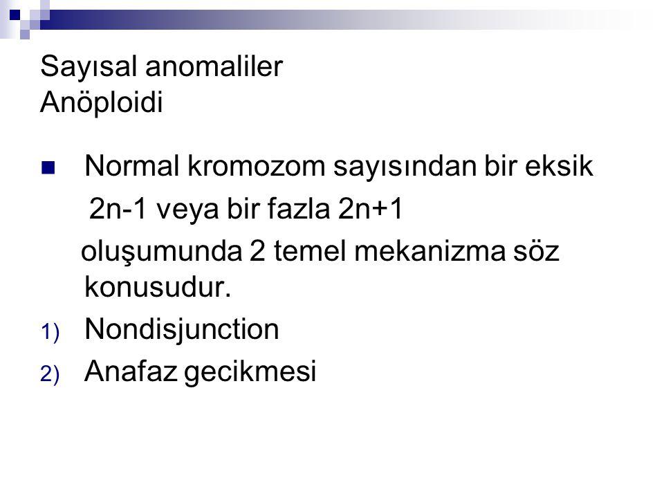 Sayısal anomaliler Anöploidi