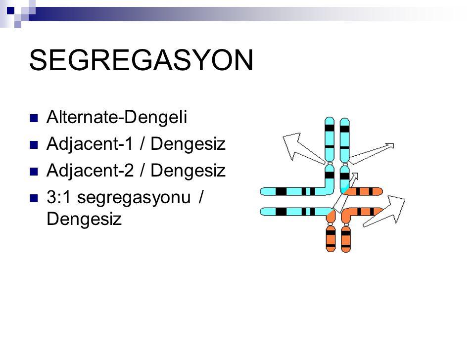 SEGREGASYON Alternate-Dengeli Adjacent-1 / Dengesiz
