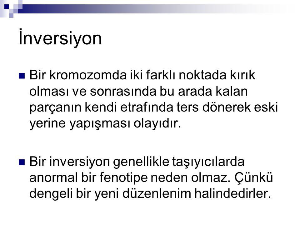 İnversiyon