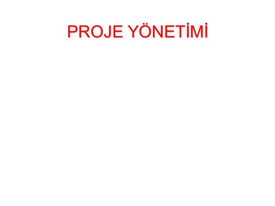 PROJE YÖNETİMİ 1