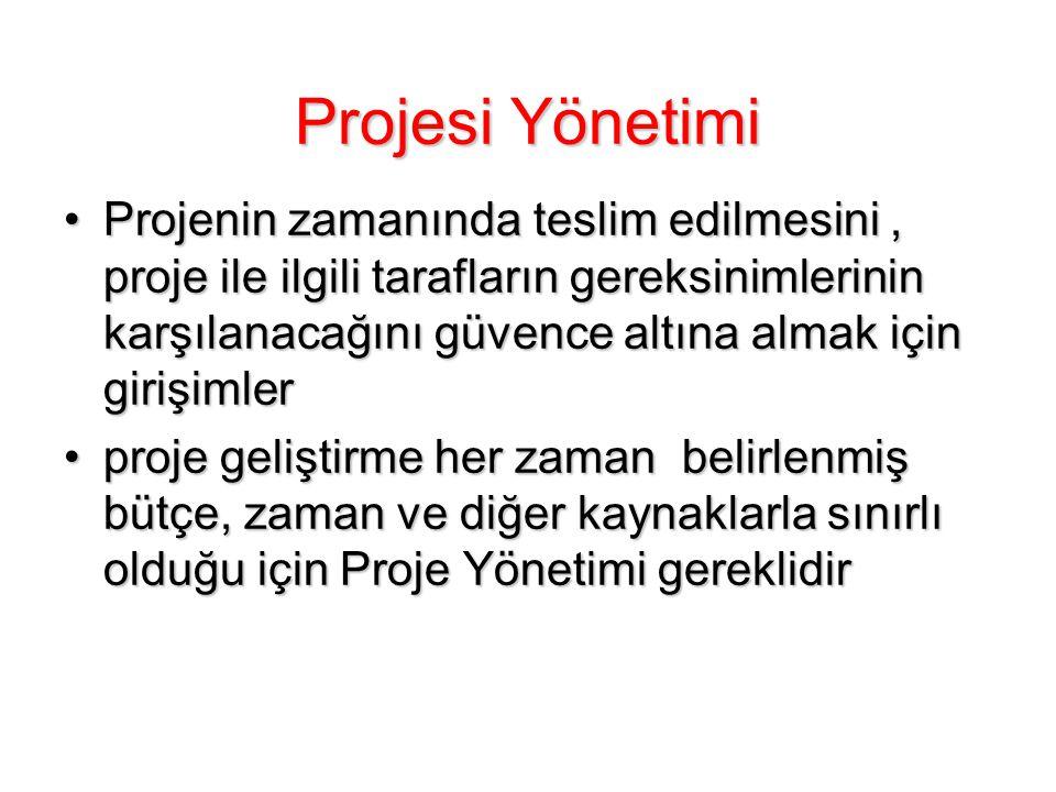 Projesi Yönetimi