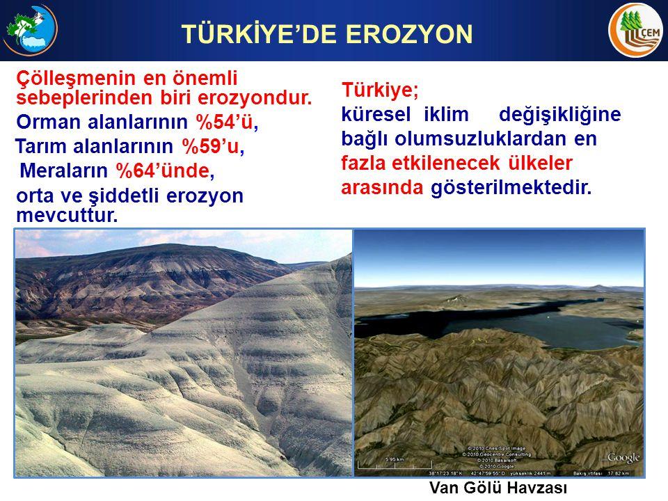 TÜRKİYE'DE EROZYON Çölleşmenin en önemli sebeplerinden biri erozyondur. Orman alanlarının %54'ü,