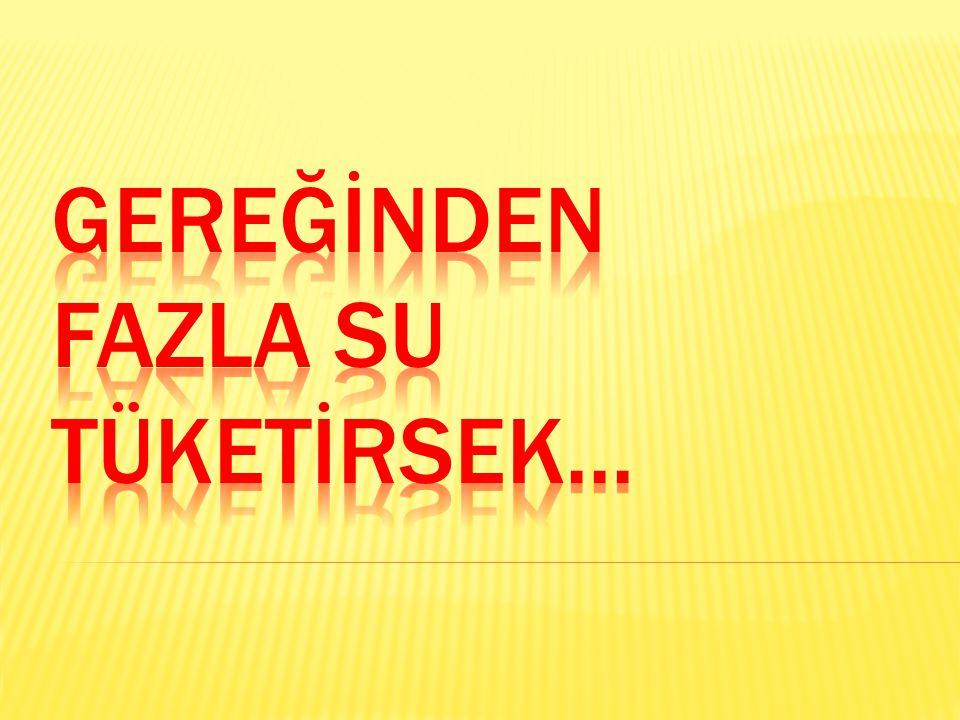 GEREĞİNDEN FAZLA SU TÜKETİRSEK...