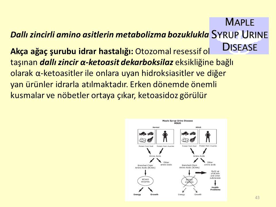 Dallı zincirli amino asitlerin metabolizma bozuklukları: