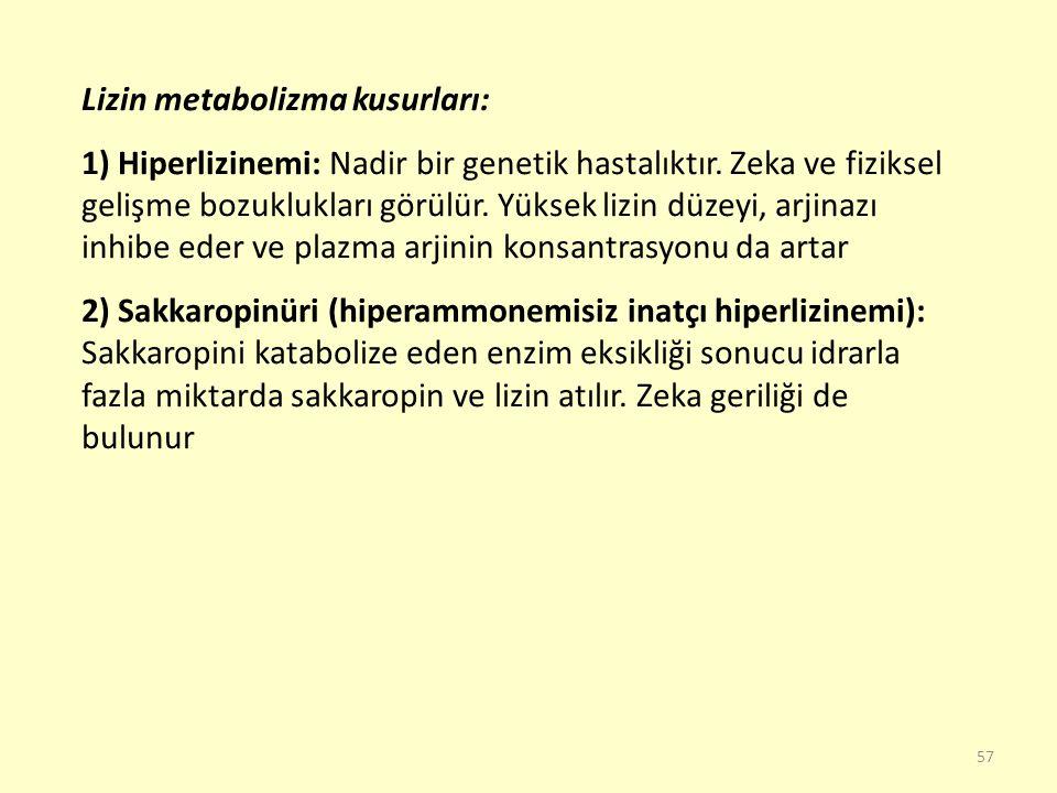 Lizin metabolizma kusurları: