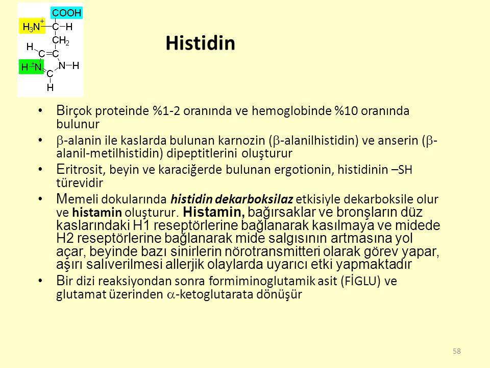 Histidin Birçok proteinde %1-2 oranında ve hemoglobinde %10 oranında bulunur.