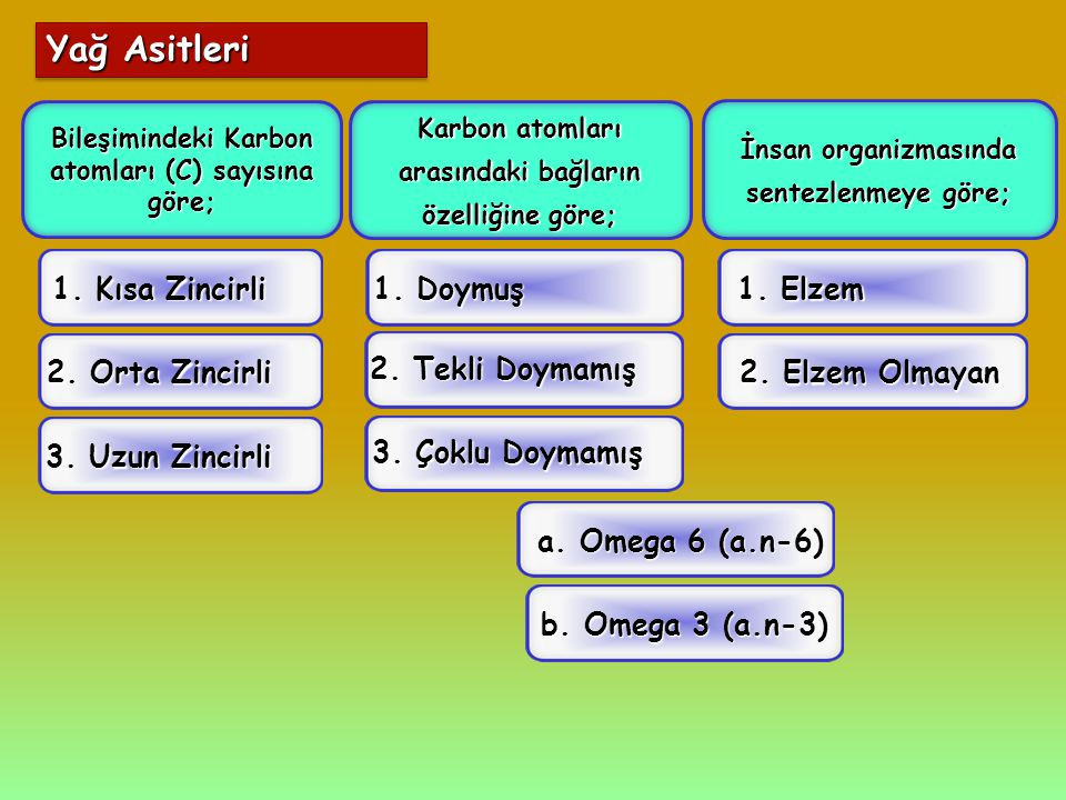 Yağ Asitleri 1. Kısa Zincirli 1. Doymuş 1. Elzem 2. Orta Zincirli
