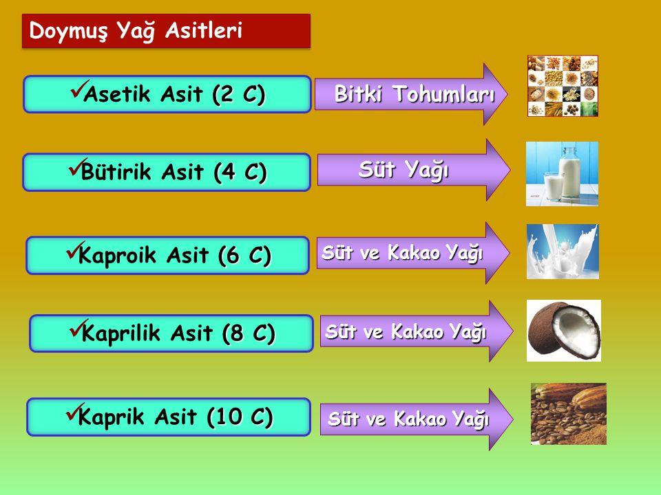 Doymuş Yağ Asitleri Asetik Asit (2 C) Bitki Tohumları