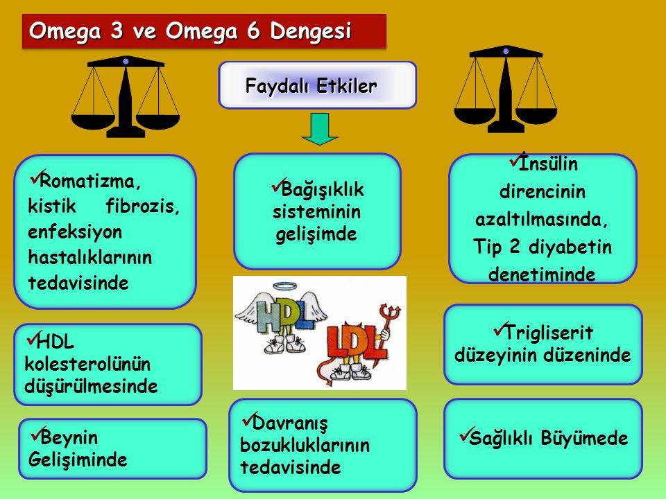 Omega 3 ve Omega 6 Dengesi Faydalı Etkiler