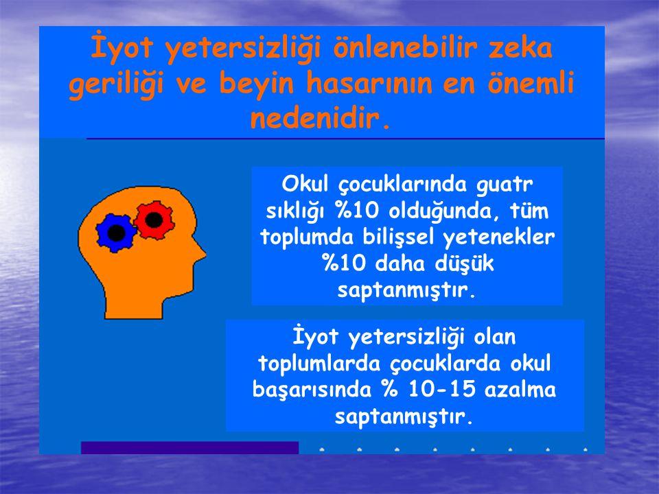 İyot yetersizliği önlenebilir zeka geriliği ve beyin hasarının en önemli nedenidir.
