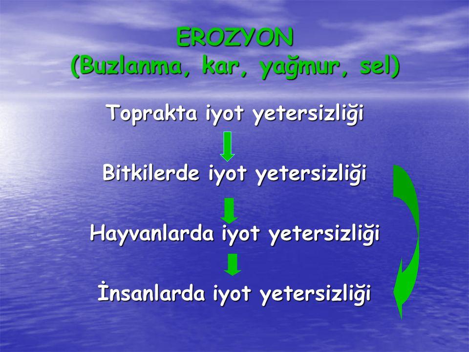 EROZYON (Buzlanma, kar, yağmur, sel)