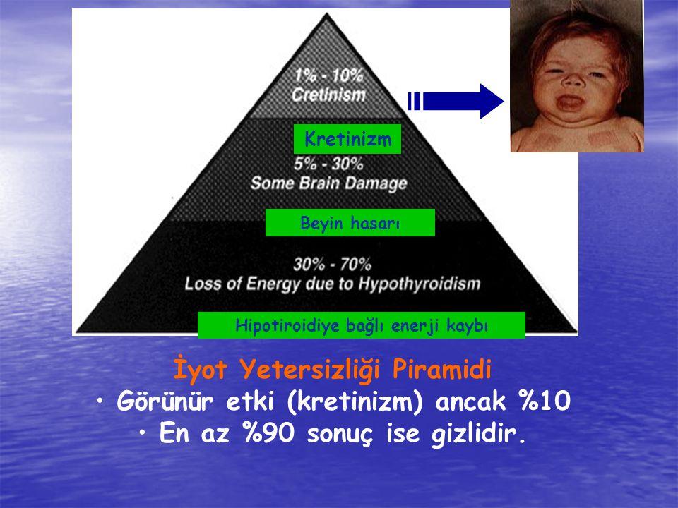 İyot Yetersizliği Piramidi Görünür etki (kretinizm) ancak %10