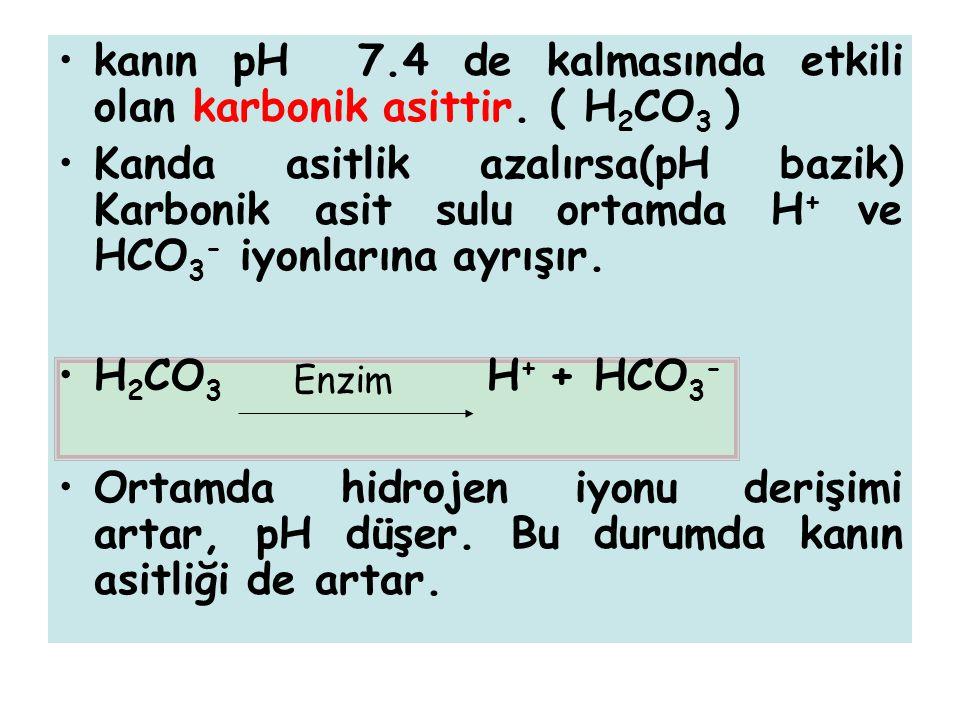 kanın pH 7.4 de kalmasında etkili olan karbonik asittir. ( H2CO3 )